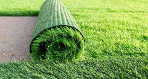 dicas de preservação de gramado sintético