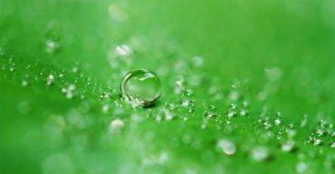 limpar gramado sintético corretamente