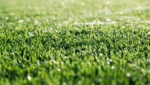 como limpar grama sintética com produtos