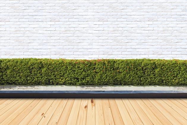 cerca de parede de grama artificial